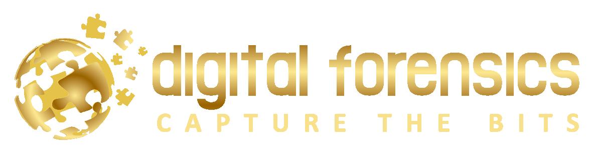 digital forensics ungarn